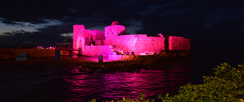 Saida Castle In Pink